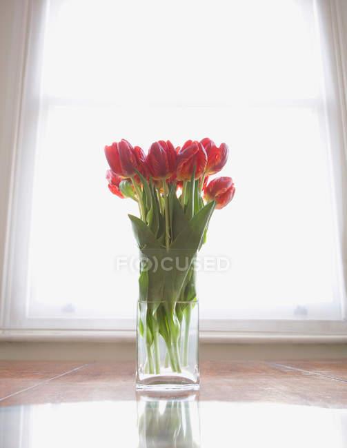 Tulips bouquet in vase against window — Stock Photo