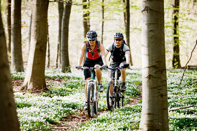 Пара горных велосипедов вместе — стоковое фото
