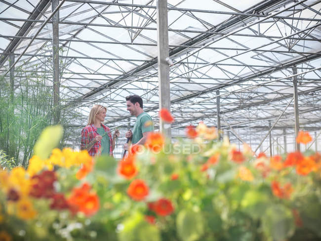 Farm workers in greenhouse abundant with blooming edible flowers in bloom — Stock Photo