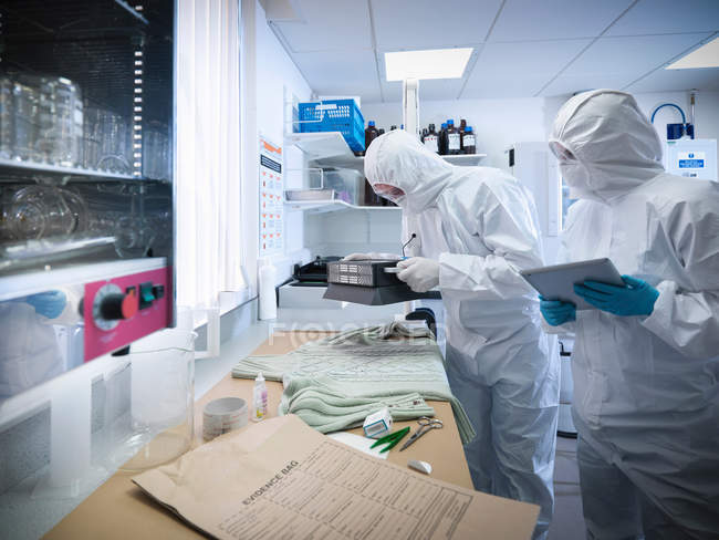 Forensic scientists taking blood sample from clothing in laboratory — Stock Photo