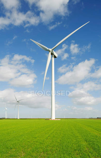 Ветряная мельница на зеленом поле — стоковое фото