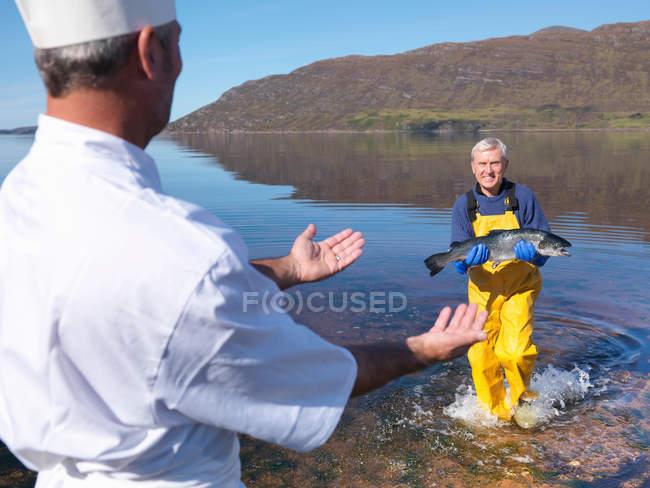 Pescatore in loch che dà salmone appena pescato allo chef — Foto stock