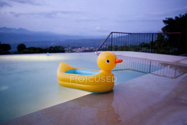 Pato flutuando na piscina — Fotografia de Stock