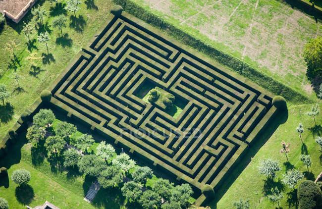 Vue du labyrinthe de haies — Photo de stock