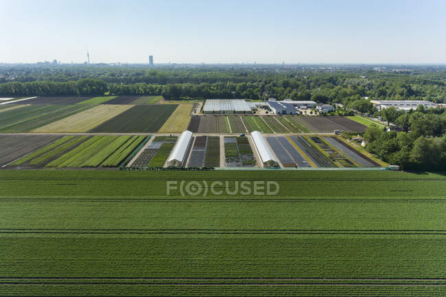 View of agriculture and greenhouses — Stock Photo