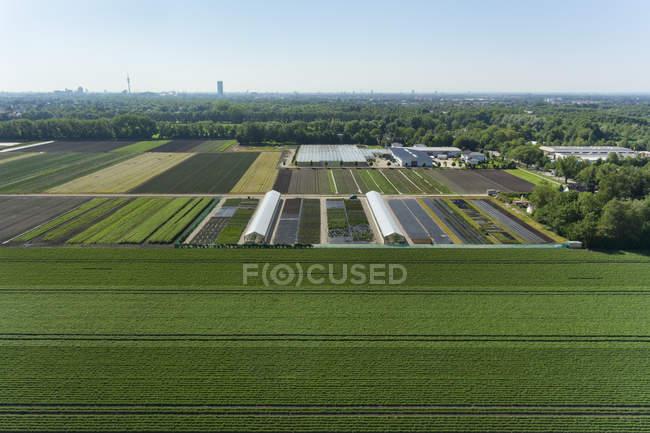 Vista da agricultura e estufas — Fotografia de Stock