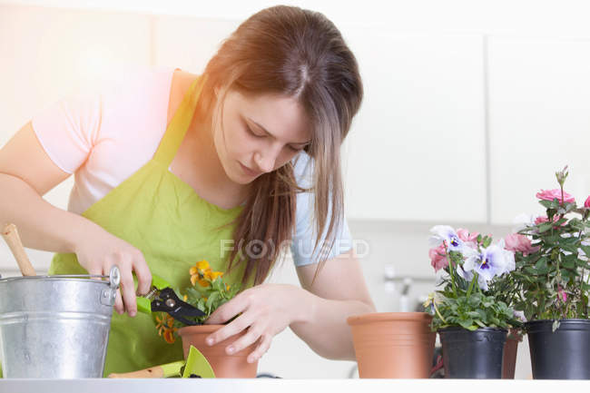Woman pruning potted plants indoors — Stock Photo