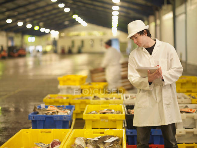 Worker Inspecting Fish In Crates — Stock Photo