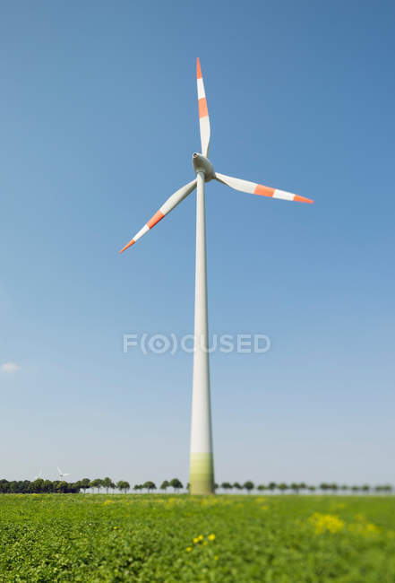 Wind turbine on green field with clear blue sky — Stock Photo
