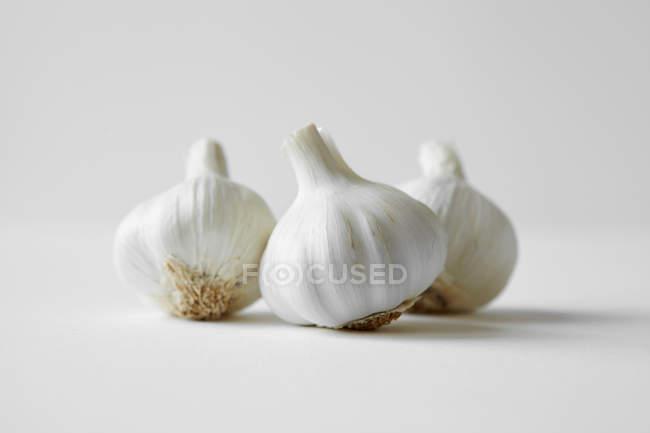 Головки чеснока на белом — стоковое фото