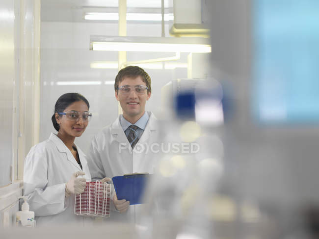 Laboratory technicians and petri dishes — Stock Photo