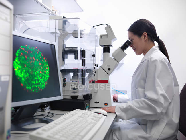 Scientist conducting stem cell research on a confocal microscope in biolab — Stock Photo