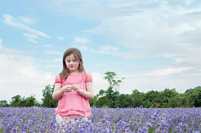 Ragazza in piedi nel campo dei fiori — Foto stock