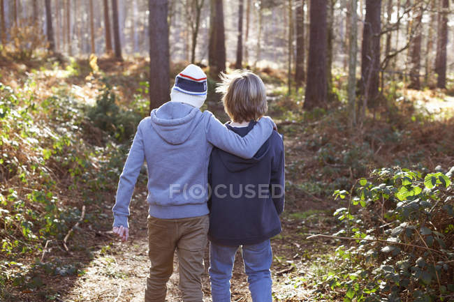 Rear view of brothers walking together in woods — Stock Photo