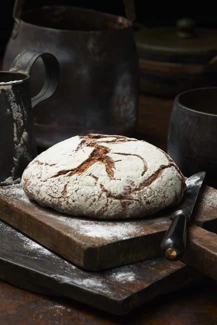 Fresh baked organic bread — Stock Photo