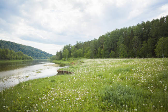 Vista del valle del río y el bosque, Sarsy Village, Óblast de Sverdlovsk, Rusia - foto de stock