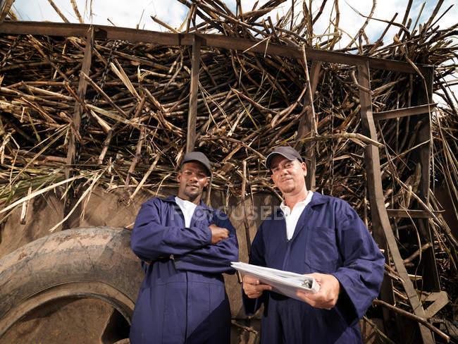 Trabalhadores com caminhão de cana de açúcar — Fotografia de Stock