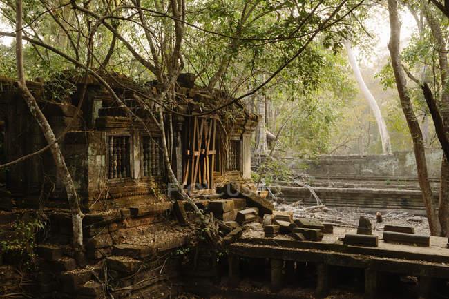 View of Ruins, Beng Mealea, Koh Ker, Cambodia — Stock Photo