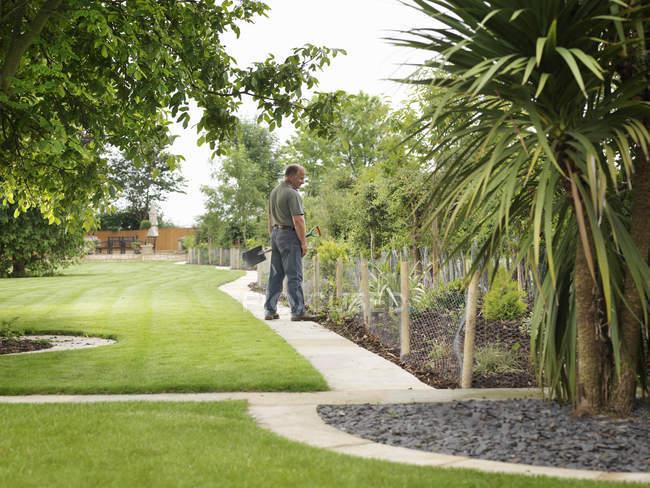 Gardener Inspecting Shrubs In Border — Stock Photo
