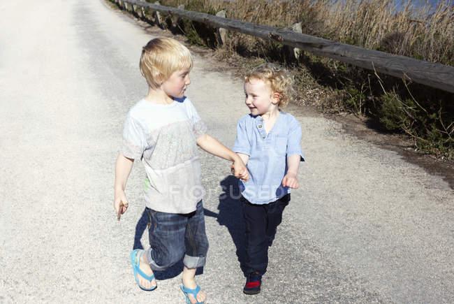 Братья идут вместе и держатся за руки на сельской дороге — стоковое фото
