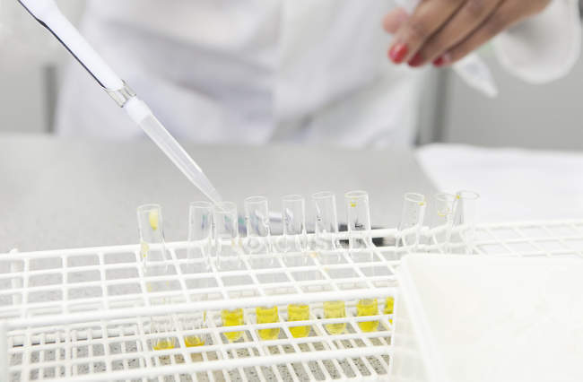 Cropped image of female hand pipetting yellow liquid into test tubes in lab — Stock Photo