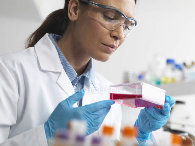 Cell biologist holding flask containing stem cells, cultivated in red growth medium, investigating disease — Stock Photo