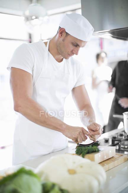 Chef masculino mezclando usando el helicóptero de hierbas en la cocina comercial - foto de stock
