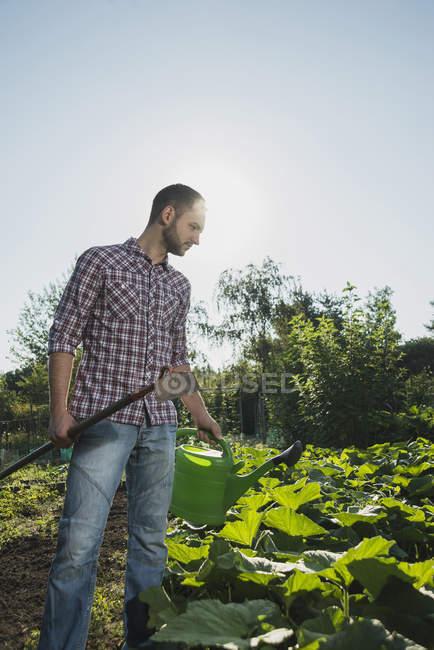 Giardiniere Che Tiene La Zappa E Irrigazione Puo Tendente Al