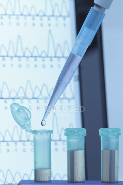 Micropipette filling eppendorf microcentrifuge tubes — Stock Photo