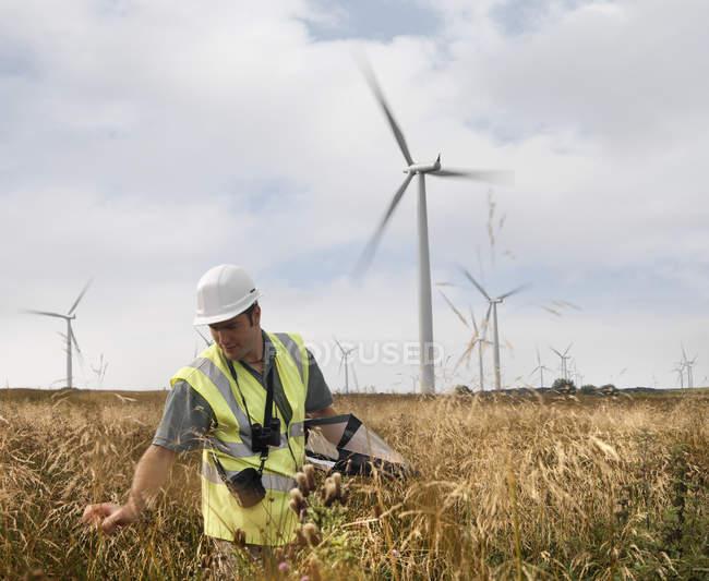 Эколог осматривает дикую природу на ветроэлектростанции — стоковое фото