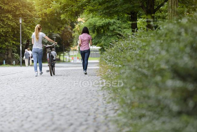 Повний задній погляд на жінок, що ходять з велосипедом. — стокове фото