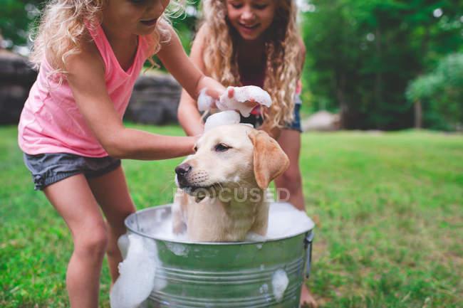 Two sisters bathing pet labrador retriever puppy — Stock Photo