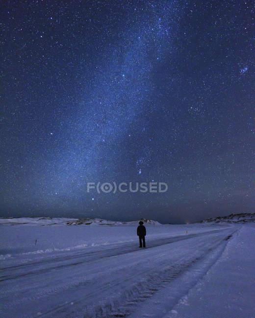 Uomo sul paesaggio coperto di neve sotto un cielo notturno stellato, Kleifarvatn, Islanda — Foto stock