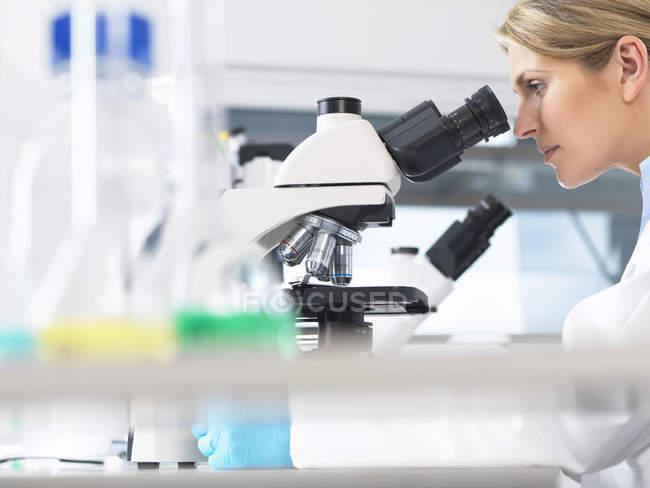 Cientista que vê a amostra em uma lâmina de vidro através do microscópio para testes médicos — Fotografia de Stock