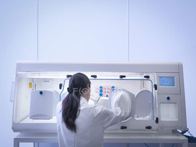 Vista posteriore dello scienziato che fa coltura cellulare utilizzando pipetta all'interno della postazione di lavoro del laboratorio — Foto stock