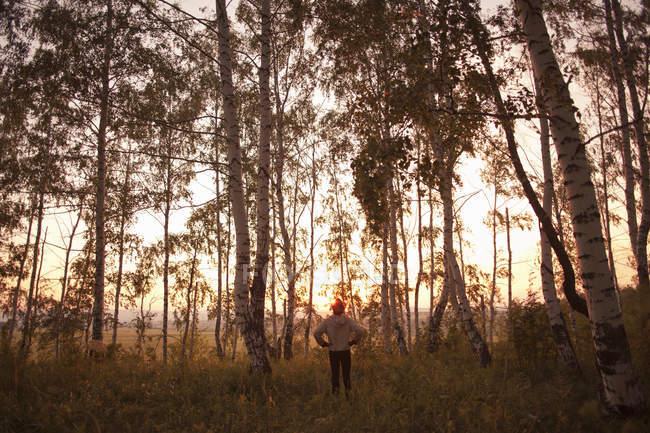 Rear view of man in forest, Sarsy village, Sverdlovsk region, Russia — Stock Photo