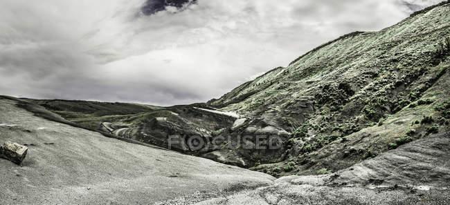 Vista del paisaje escaso - foto de stock