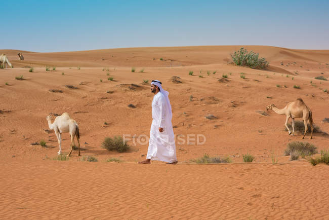 Middle eastern man wearing traditional clothes walking past camels in desert, Dubai, United Arab Emirates — Stock Photo
