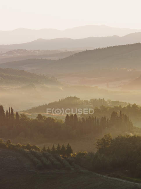 Rolling hills with silhouettes of cypress trees, San Gimignano, Italy — Stock Photo