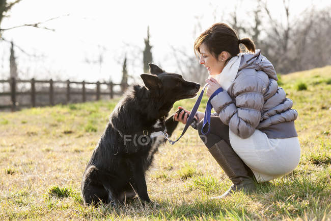 Mid adult woman training her dog to hold up paw in field — Stock Photo