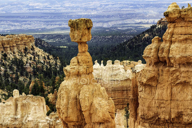Elevated view of sandstone rock formations, Bryce canyon, garfield County, Utah, USA — Stock Photo
