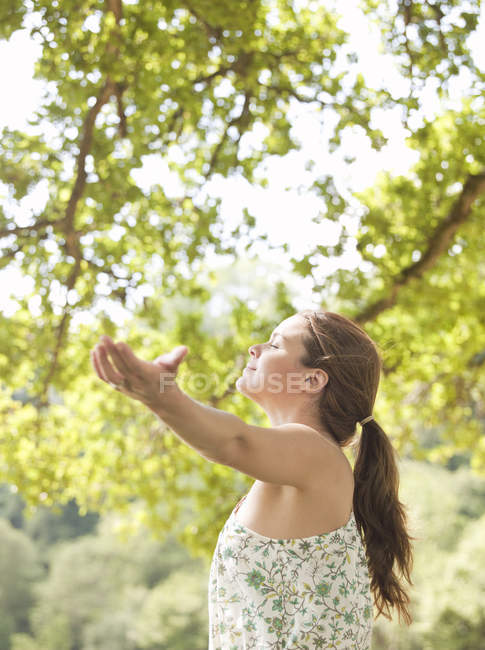 Woman raising hands under tree — Stock Photo