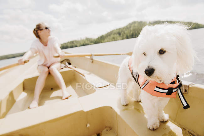 Coton de tulear dog with woman rowing in boat, Orivesi, Finland — Stock Photo