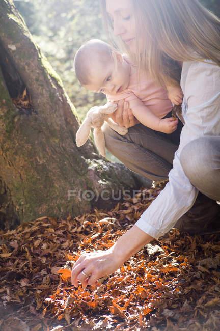 Madre e hija agachadas investigando hojas en el suelo del bosque - foto de stock