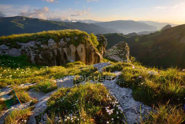 Paysage avec des fleurs sauvages et des rochers, Bolshoy Thach Nature Park, Montagnes Caucasiennes, République d'Adygea, Russie — Photo de stock