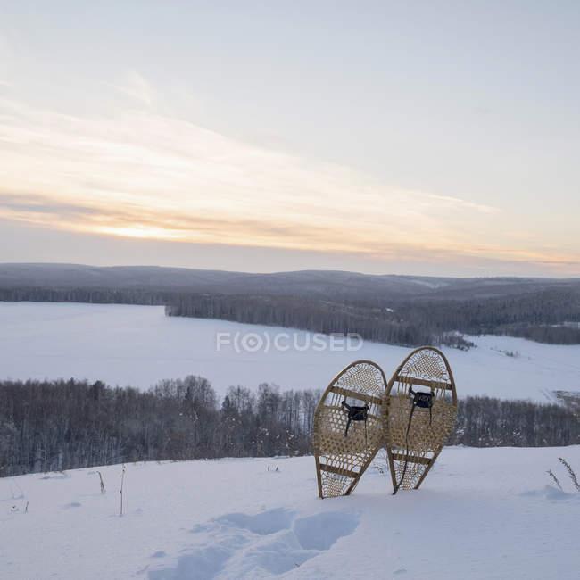 Снежный пейзаж с снегоступы и следы на холме — стоковое фото