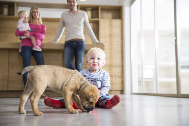 Семья наблюдает за мальчиком с щенком на полу столовой — стоковое фото