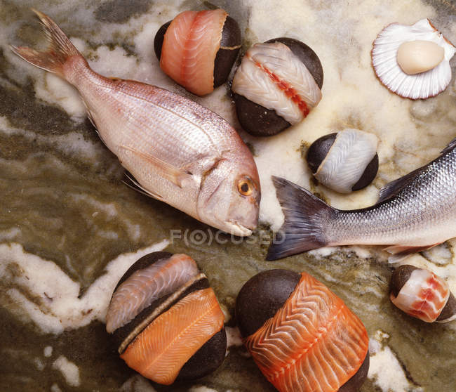 Top view of fish and scallops on surface — Stock Photo