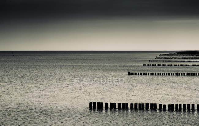 Sea of Zingst, Mecklenburg-Vorpommern, Germany — Stock Photo