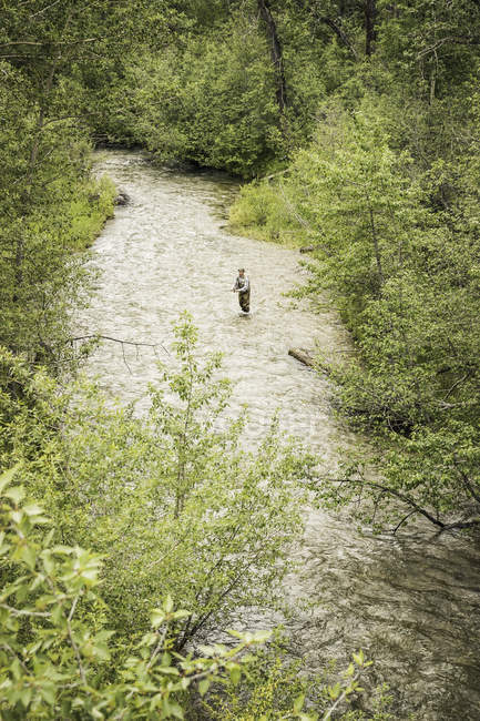 High angle view of man fly fishing in river — Stock Photo